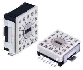 Rotary Code Switch, 32 positions, SMT RA, Arrow-shaped slot