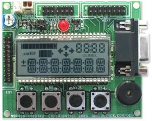 Custom LCD form MSP430-449STK2