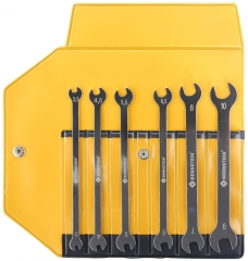 6-piece special double open-ended wrench set in plastic case