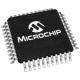 128KB SWFlash, CAN, DMA, 40 MIPS, nanoWatt